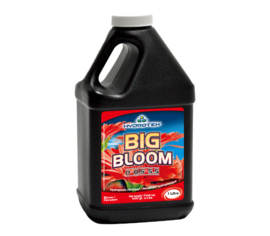 Big Bloom 1 qt. (1 L)