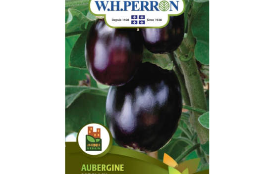 Aubergine Pot Black