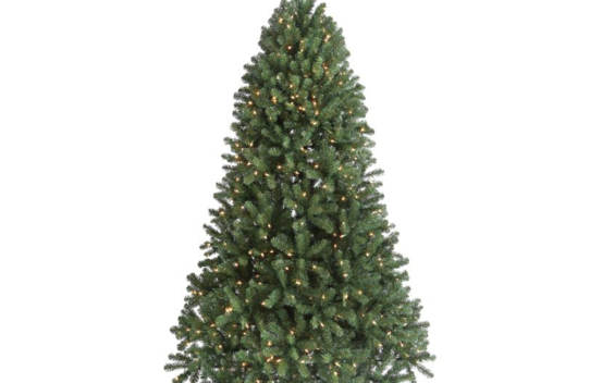 "Sapin Hudson Valley 6,5' X 50"" 600 lumières multicolores MTX49894GTGMB"