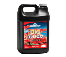 Big Bloom 1 gal. (4 L)