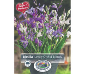 Bletilla Lovely Orchid Blends (Mélange Perfect Partners) (Paquet de 3 bulbes) (taille : 16/18 cm)